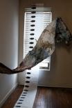 Cloonan_BreathingDrawings_installationshot4_spring2013