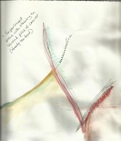 drawing_mark6