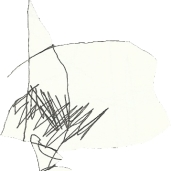 scanner_drawing8